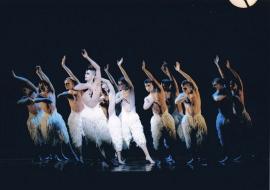 swan lake on stage - 01